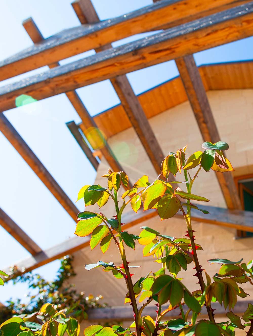 case-in-legno-sostenibilita-natura-kager